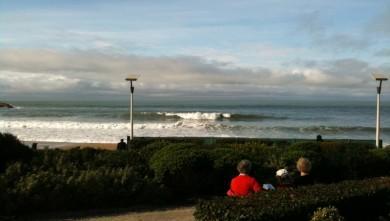 Surf report FR, Biarritz - Grande Plage (64) du 2009-11-16 14:06:00