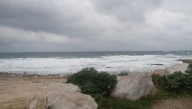 Surf report FR, L'Arquet (13) du 2009-11-22 07:15:00