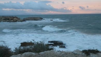 Surf report FR, L'Arquet (13) du 2009-11-29 09:00:00