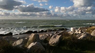 Surf report FR, Berck - Le Terminus (62) du 2009-12-04 13:00:00