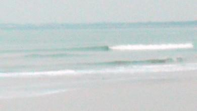 Surf report FR, Grand Village (17) du 2009-12-17 09:00:00