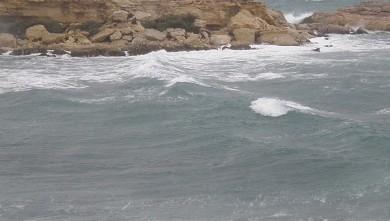 Surf report FR, L'Arquet (13) du 2009-12-23 17:00:00