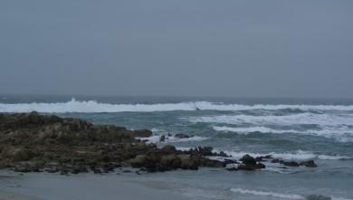 wave report FR, La Torche (29) du 2009-12-29 11:30:00