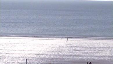 Surf report FR, Sciotot (50) du 2010-01-03 16:00:00