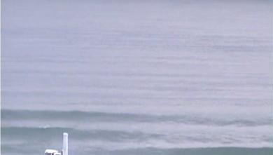 Surf report FR, Sciotot (50) du 2010-01-06 10:00:00