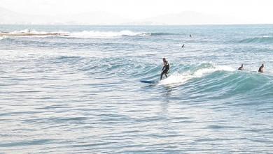Surf report FR, Sausset les Pins - Plage du Port (13) du 2010-01-13 13:00:00