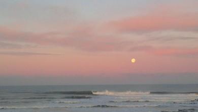 Surf report FR, Lacanau Océan - La Nord (33) du 2010-01-31 09:00:00