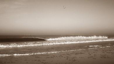 Surf report FR, La Térrière (85) du 2010-01-31 12:00:00