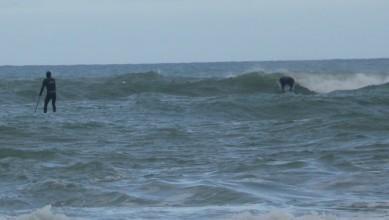 Surf report FR, Lacanau Océan - La Nord (33) du 2010-02-02 11:00:00