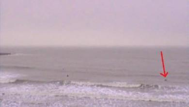 Surf report FR, Royan - Pontaillac (17) du 2010-01-15 14:00:00