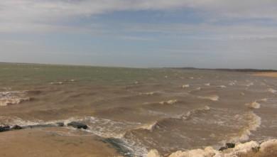 Wind report FR, La Palmyre - Bonne-Anse (17) du 2010-02-24 10:00:00