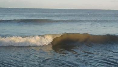 Surf report FR, Plage du Douhet (17) du 2010-02-28 16:00:00