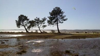 wind report FR, Lacanau Lac (33) du 2010-04-03 16:00:00