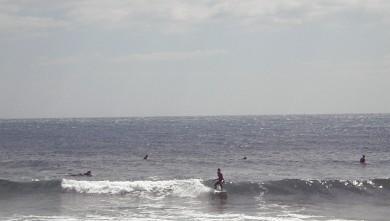 wave report FR, Sausset-les-Pins - L'Hermitage (13) du 2010-05-15 16:00:00