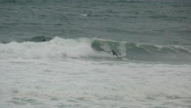 Surf report FR, Lacanau Océan - La Nord (33) du 2010-06-01 18:00:00