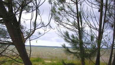 Wind report FR, Les Aigrettes (40) du 2010-07-14 14:00:00