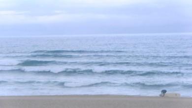 Surf report FR, Vieux Boucau (40) du 2010-08-04 12:00:00