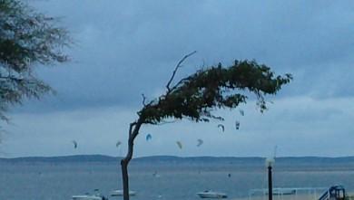Wind report FR, Arcachon - Les Arbousiers (33) du 2010-08-04 19:00:00