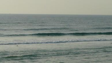 Surf report FR, Biscarrosse Plage (40) du 2010-09-02 19:00:00