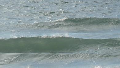 Surf report FR, Carcans Océan (33) du 2010-09-20 18:00:00