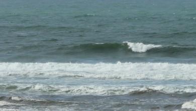 Surf report FR, Mimizan - Plage Garluche (40) du 2010-01-20 14:00:00