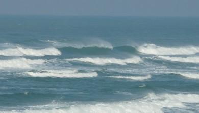 Surf report FR, Mimizan - Plage Garluche (40) du 2010-01-26 12:30:00