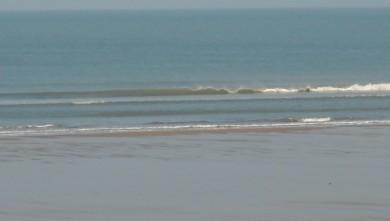 Surf report FR, Grand Village (17) du 2010-04-10 09:00:00