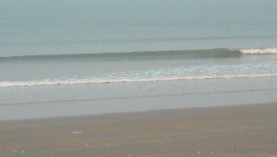 wave report FR, Le Trillou (17) du 2010-04-15 08:00:00