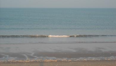 wave report FR, Grand Village (17) du 2010-04-16 08:00:00