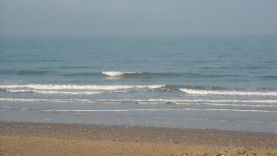 wave report FR, Grand Village (17) du 2010-04-20 09:00:00