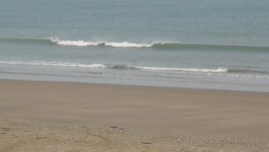 wave report FR, Grand Village (17) du 2010-04-21 09:00:00