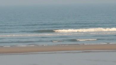 wave report FR, Grand Village (17) du 2010-04-24 08:00:00