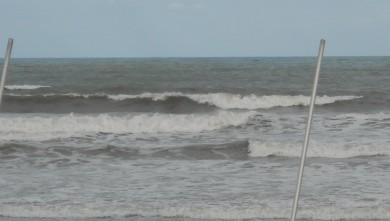 wave report FR, Grand Village (17) du 2010-04-30 09:00:00