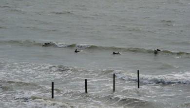 wave report FR, Gohaud (44) du 2010-05-15 16:45:00