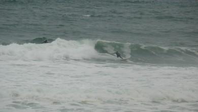 Surf report FR, Lacanau Océan - La Nord (33) du 2010-06-01 19:00:00