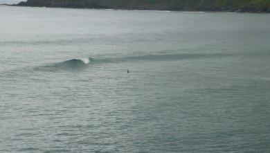 Surf report ES, Mundaka (ES) du 2010-06-06 08:30:00