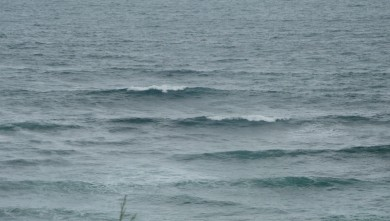 wave report FR, Guethary Parlementia (64) du 2010-06-06 13:00:00