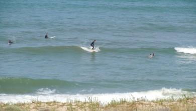 Surf report FR, Lacanau Océan - La Nord (33) du 2010-06-18 11:30:00