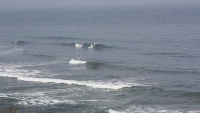 Surf report MA, Imsouane - Cathédrale (MA) du 2010-07-01 09:30:00