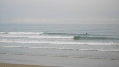 wave report FR, Grand Village (17) du 2010-07-02 09:00:00
