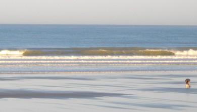 wave report FR, Grand Village (17) du 2010-07-07 09:00:00