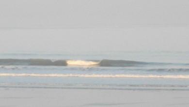 wave report FR, Grand Village (17) du 2010-07-08 07:00:00