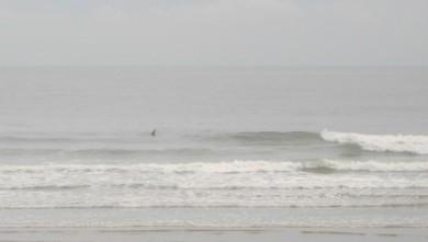 wave report FR, Grand Village (17) du 2010-07-12 09:00:00