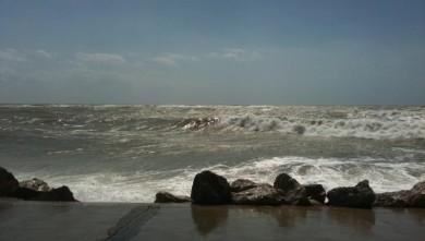 Surf report FR, Berck - Le Terminus (62) du 2010-07-15 15:35:00