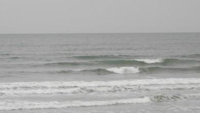 wave report FR, Grand Village (17) du 2010-07-29 09:00:00