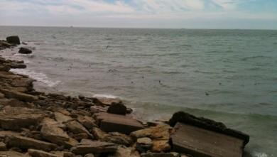 wave report FR, Wimereux - La Pointe aux Oies (62)