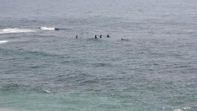 Surf report MA, Imsouane - Cathédrale (MA)