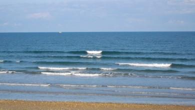 wave report FR, Grand Village (17) du 2010-08-02 09:00:00