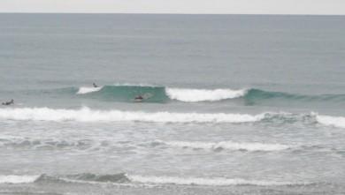 wave report FR, Grand Village (17) du 2010-08-03 09:00:00