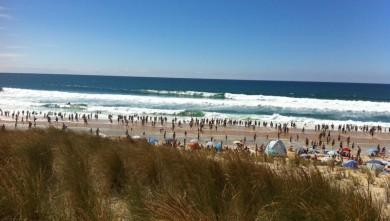 Surf report FR, Biscarrosse Plage (40) du 2010-08-08 15:33:00